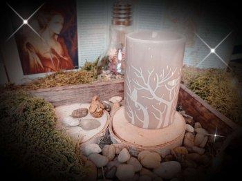brûle-parfums treebee pour fondant parfumé - 1
